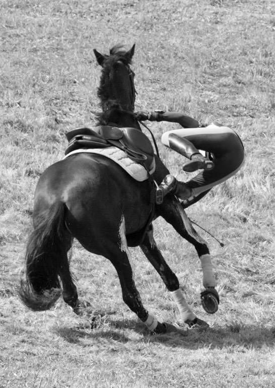 Andy Booth - Equitation éthologique